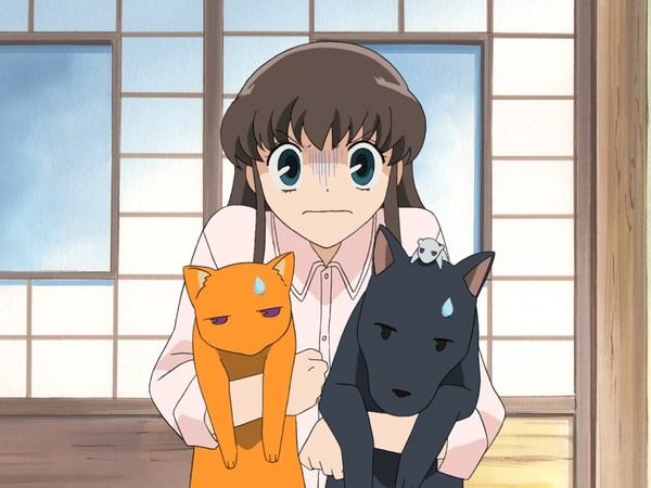 Anime Review Fruits Basket Simpleek